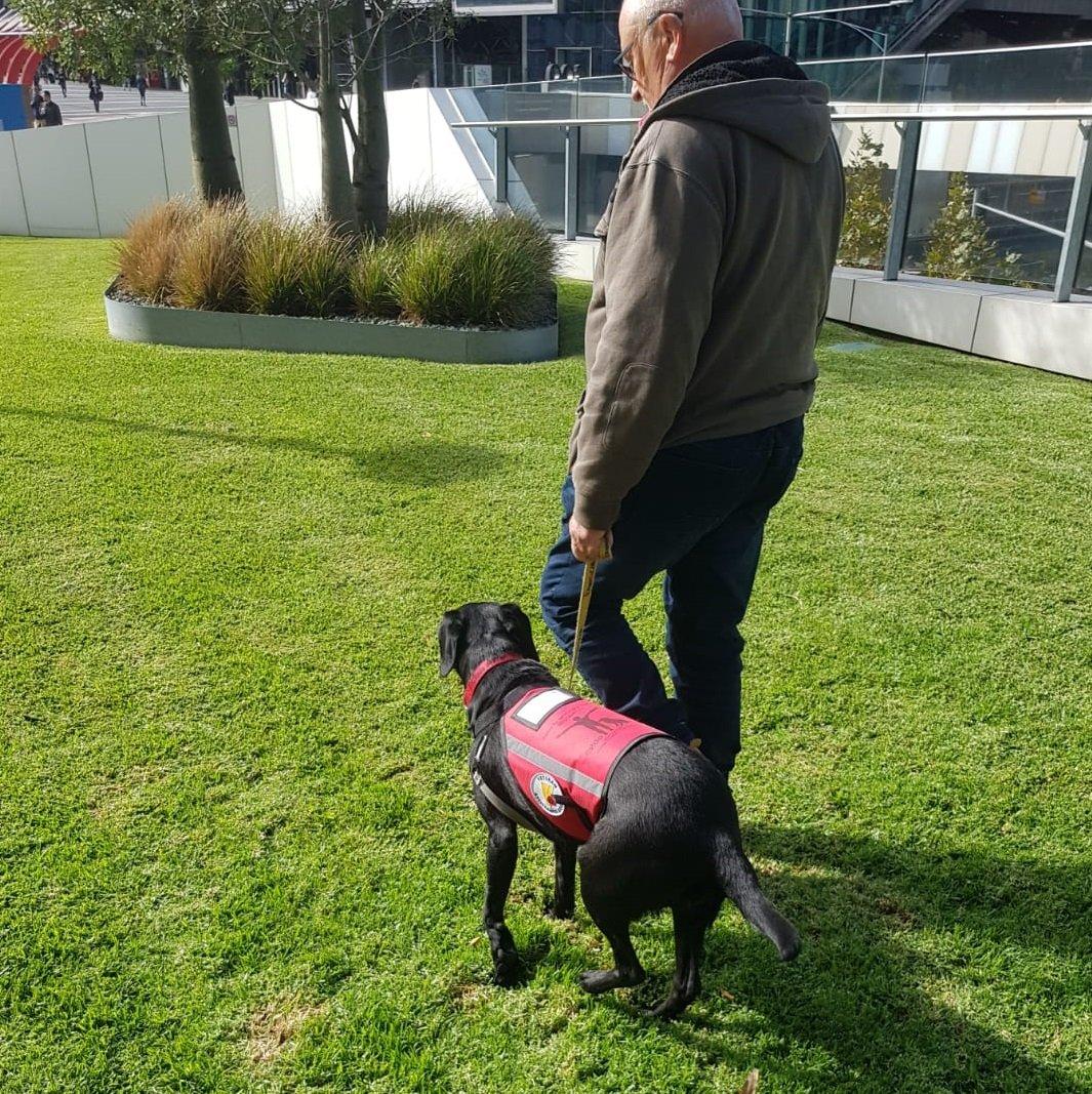 Koda with her veteran